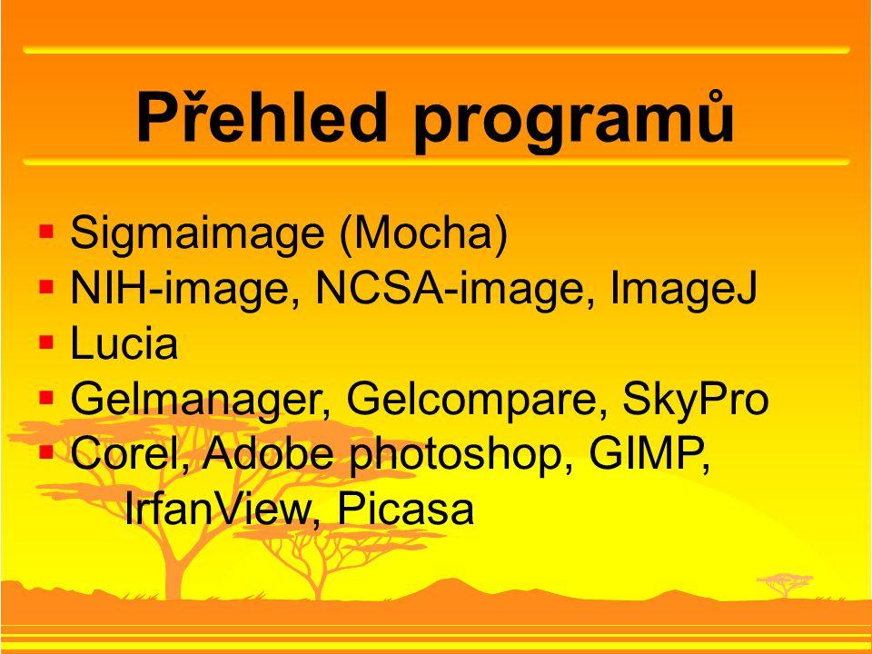 Přehled programů  Sigmaimage (Mocha)  NIH-image, NCSA-image, ImageJ  Lucia  Gelmanager, Gelcompare, SkyPro  Corel, Adobe photoshop, GIMP, IrfanView, Picasa