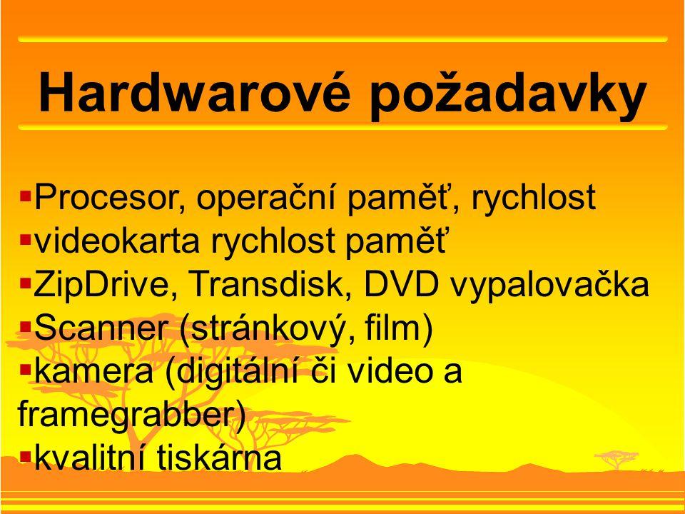 Hardwarové požadavky  Procesor, operační paměť, rychlost  videokarta rychlost paměť  ZipDrive, Transdisk, DVD vypalovačka  Scanner (stránkový, film)  kamera (digitální či video a framegrabber)  kvalitní tiskárna