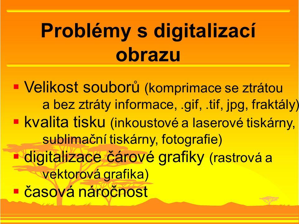 Problémy s digitalizací obrazu  Velikost souborů (komprimace se ztrátou a bez ztráty informace,.gif,.tif, jpg, fraktály)  kvalita tisku (inkoustové a laserové tiskárny, sublimační tiskárny, fotografie)  digitalizace čárové grafiky (rastrová a vektorová grafika)  časová náročnost