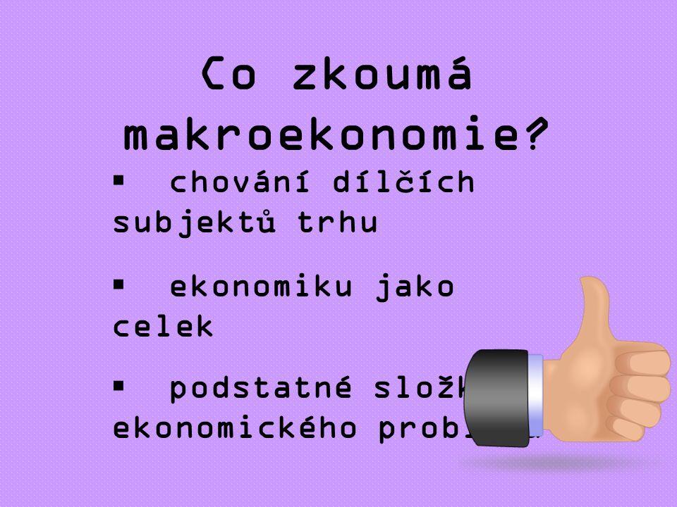 Co zkoumá makroekonomie.