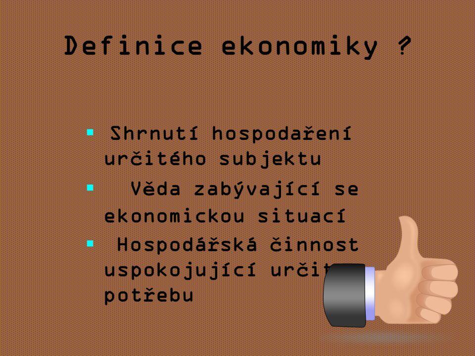 Definice ekonomiky .