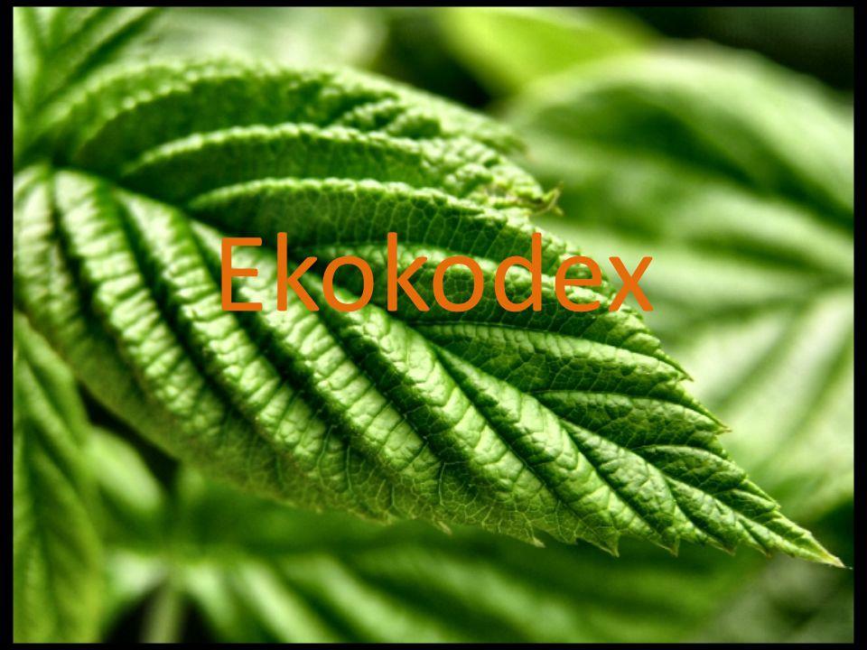 Ekokodex