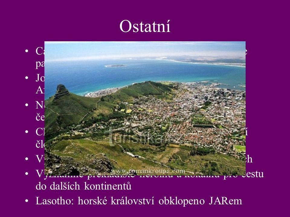 Ostatní Cape Town: legislativní hlavní město, sídlí zde parlament, mys Dobré Naděje, tučnáci Johannesburg: nejlidnatější město J Afriky,centrum obchod