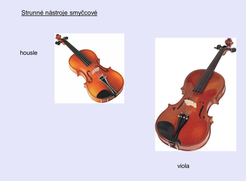 Strunné nástroje smyčcové housle viola