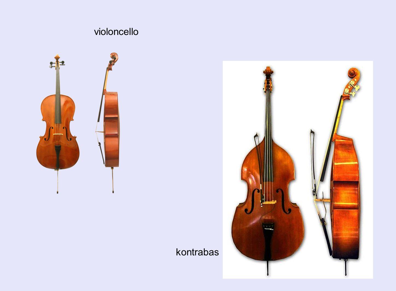 violoncello kontrabas