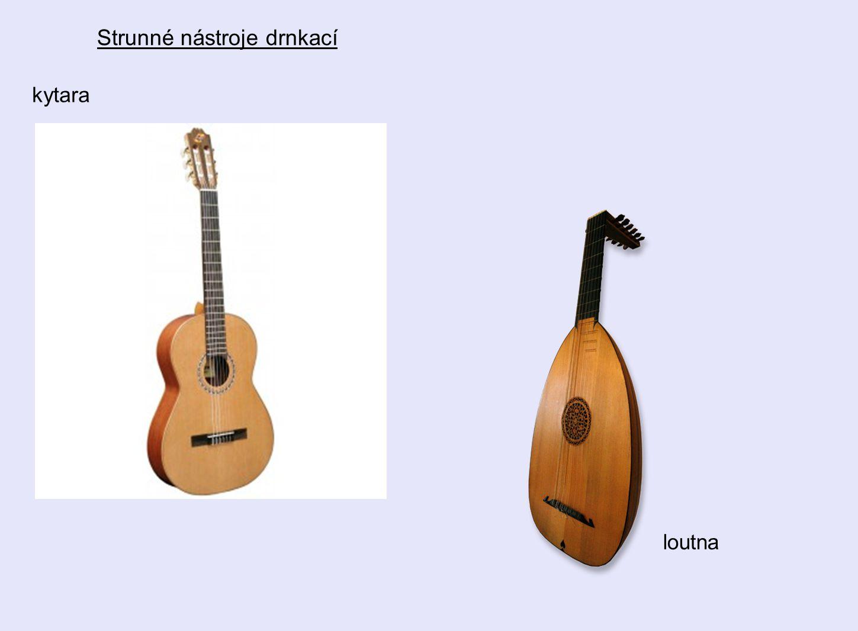 Strunné nástroje drnkací kytara loutna