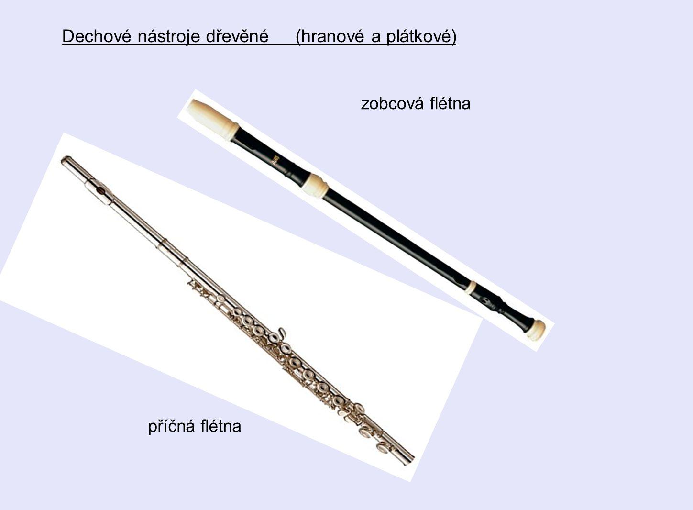 zobcová flétna příčná flétna Dechové nástroje dřevěné (hranové a plátkové)