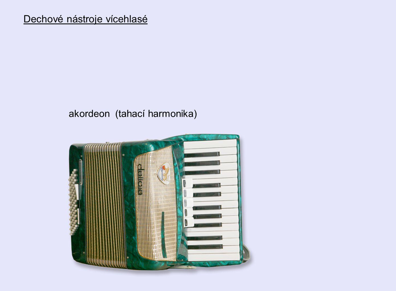akordeon (tahací harmonika) Dechové nástroje vícehlasé