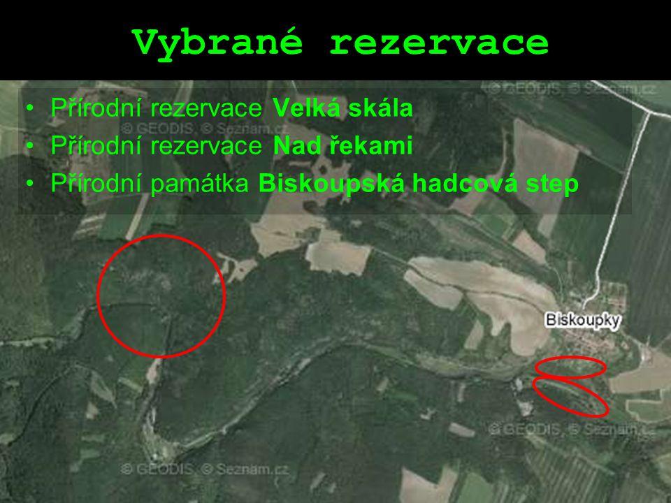 Vybrané rezervace Přírodní rezervace Velká skála Přírodní rezervace Nad řekami Přírodní památka Biskoupská hadcová step