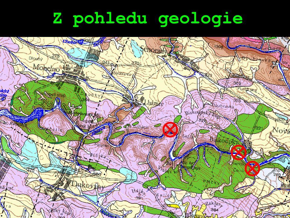 Přírodní rezervace Velká skála Rozloha: 7,9 ha Nadmořská výška: 238 - 370 m n.