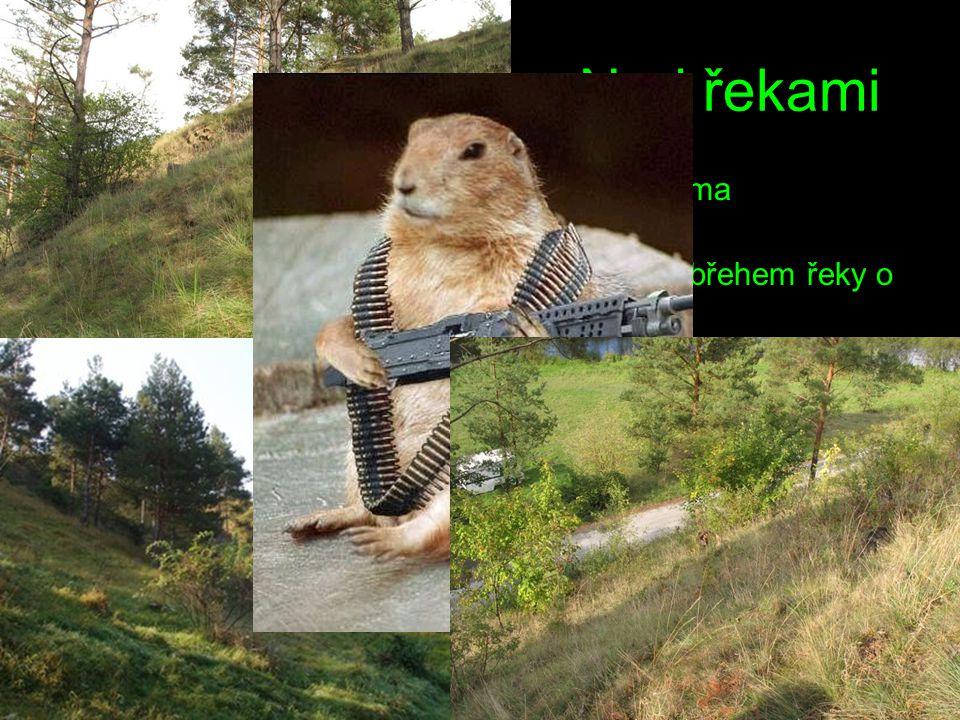Přírodní rezervace Nad řekami Rozloha: 7,8 ha + 3,5 ha ochranného pásma Nadmořská výška: 238 - 272 m n.