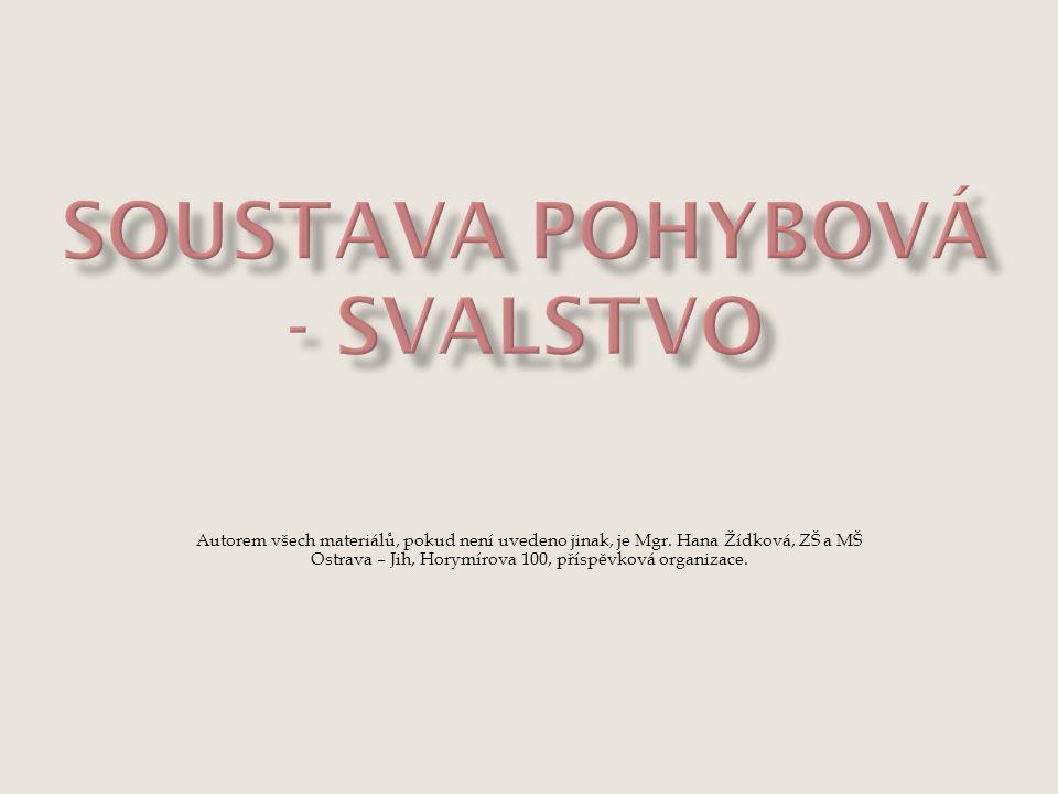 Autorem všech materiálů, pokud není uvedeno jinak, je Mgr. Hana Žídková, ZŠ a MŠ Ostrava – Jih, Horymírova 100, příspěvková organizace.