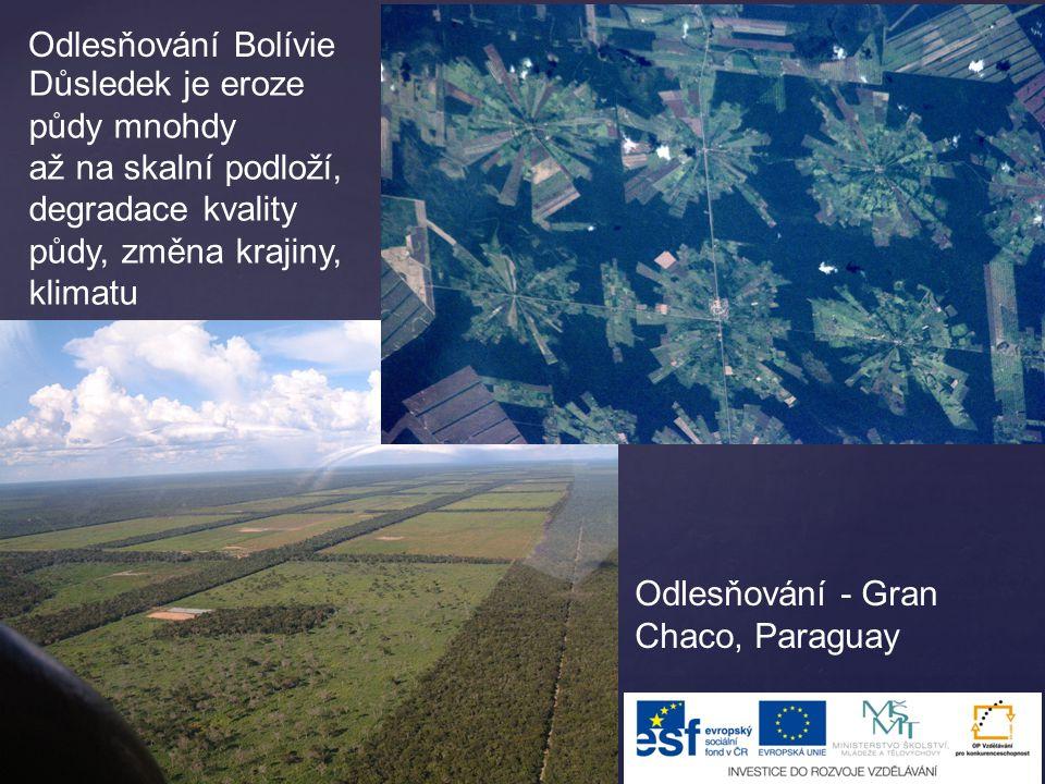 Odlesňování - Gran Chaco, Paraguay Odlesňování Bolívie Důsledek je eroze půdy mnohdy až na skalní podloží, degradace kvality půdy, změna krajiny, klim
