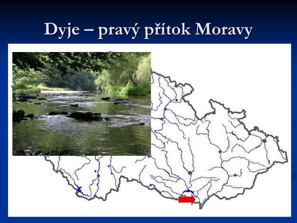 Dyje – pravý přítok Moravy