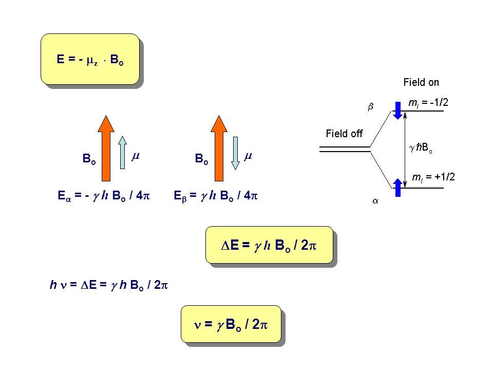 E = -  z    B o BoBo  BoBo  E  = -  h B o / 4  E  =  h B o / 4   E =  h B o / 2  h =  E =  h B o / 2  =  B o / 2 