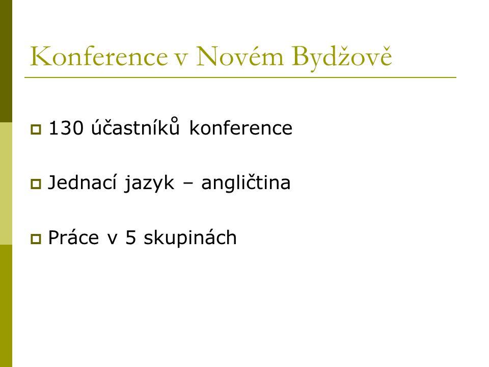 Konference v Novém Bydžově  130 účastníků konference  Jednací jazyk – angličtina  Práce v 5 skupinách