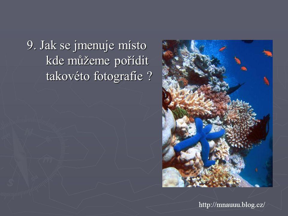 http://mnauuu.blog.cz/ 9. Jak se jmenuje místo kde můžeme pořídit takovéto fotografie ?