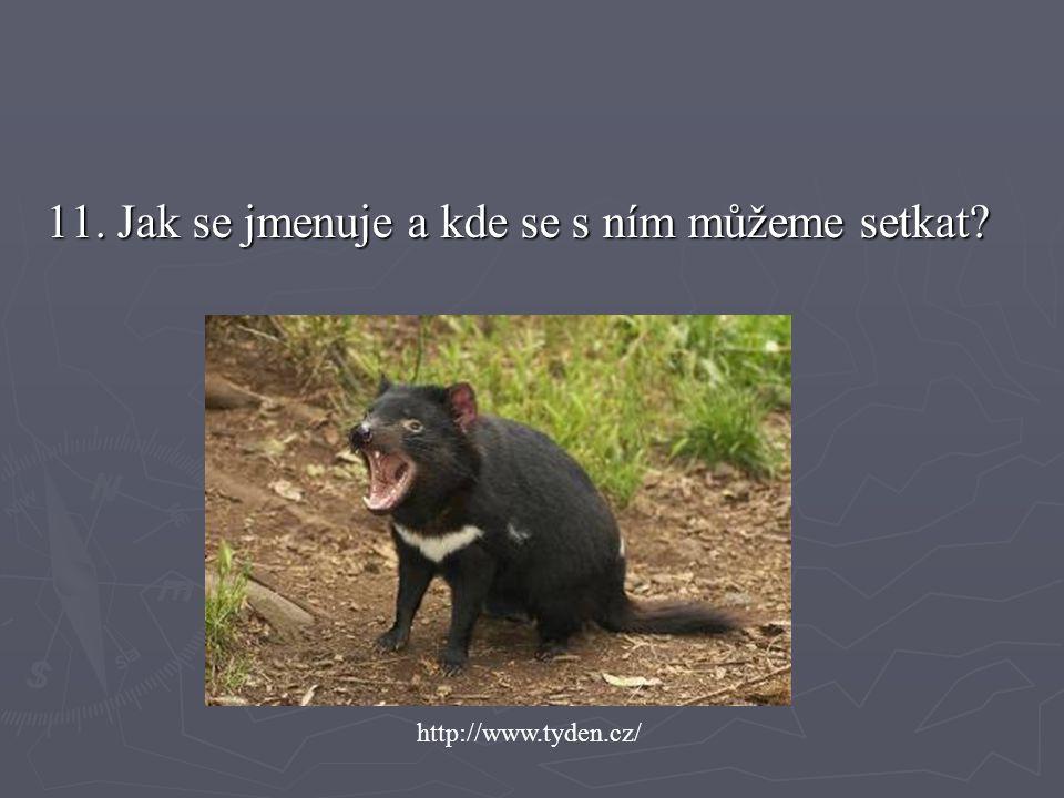 11. Jak se jmenuje a kde se s ním můžeme setkat? http://www.tyden.cz/