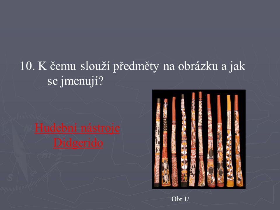 10. K čemu slouží předměty na obrázku a jak se jmenují? Obr.1/ Hudební nástroje Didgerido