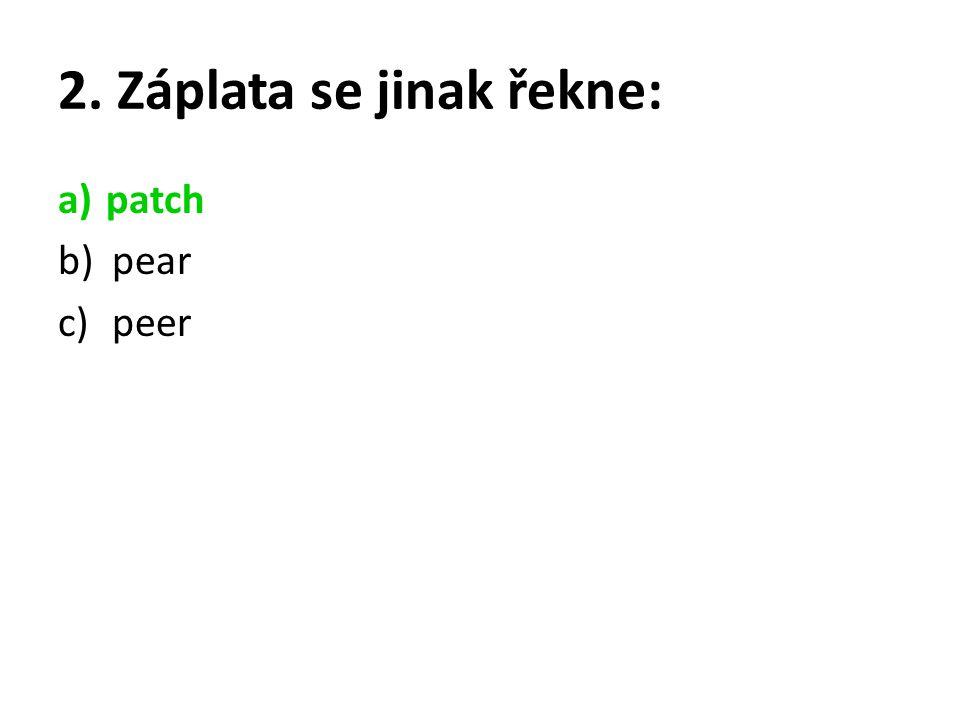 2. Záplata se jinak řekne: a)patch b)pear c)peer