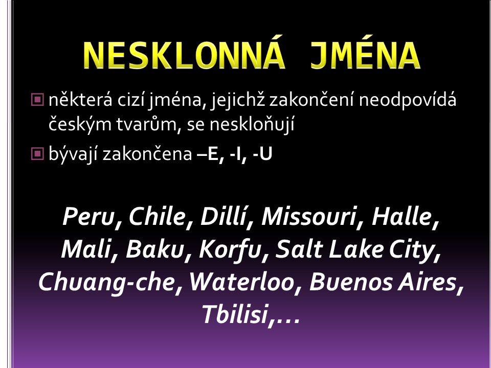 některá cizí jména, jejichž zakončení neodpovídá českým tvarům, se neskloňují bývají zakončena –E, -I, -U Peru, Chile, Dillí, Missouri, Halle, Mali, B