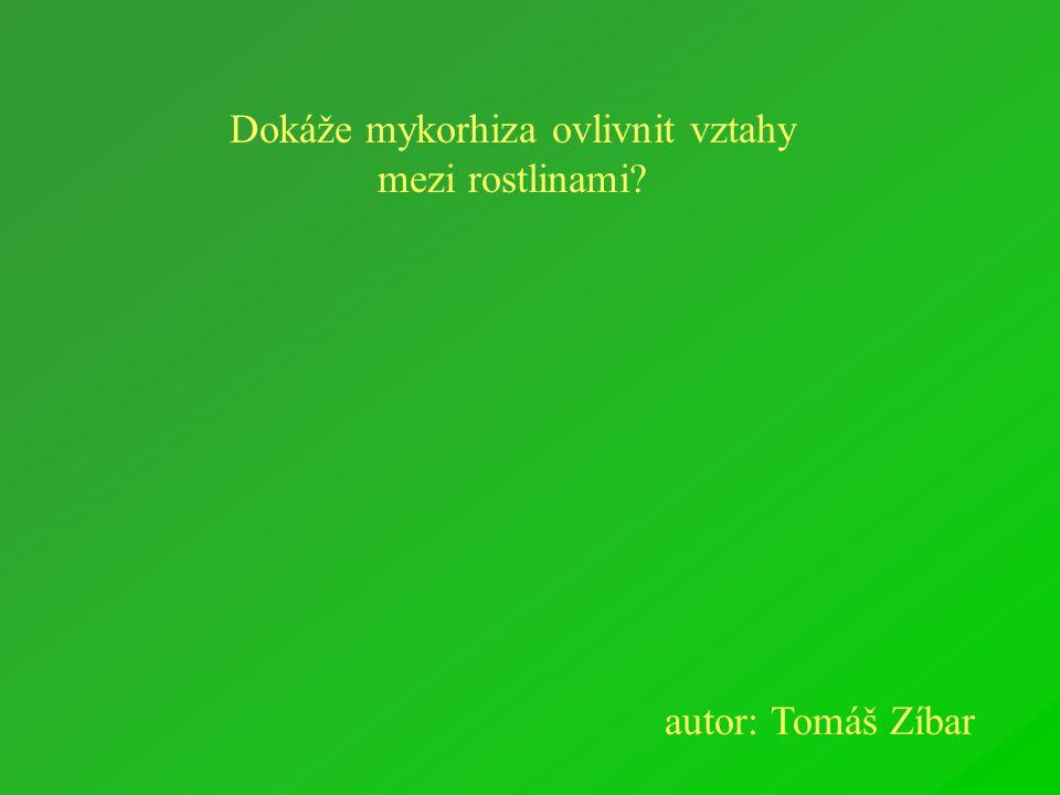 Dokáže mykorhiza ovlivnit vztahy mezi rostlinami autor: Tomáš Zíbar