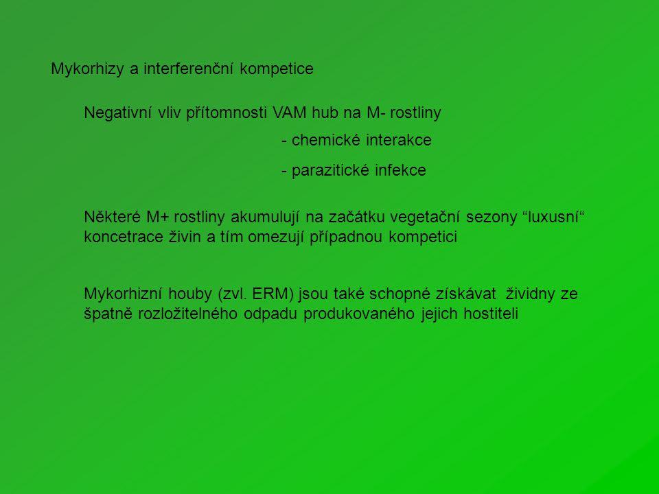 Negativní vliv přítomnosti VAM hub na M- rostliny - chemické interakce - parazitické infekce Některé M+ rostliny akumulují na začátku vegetační sezony