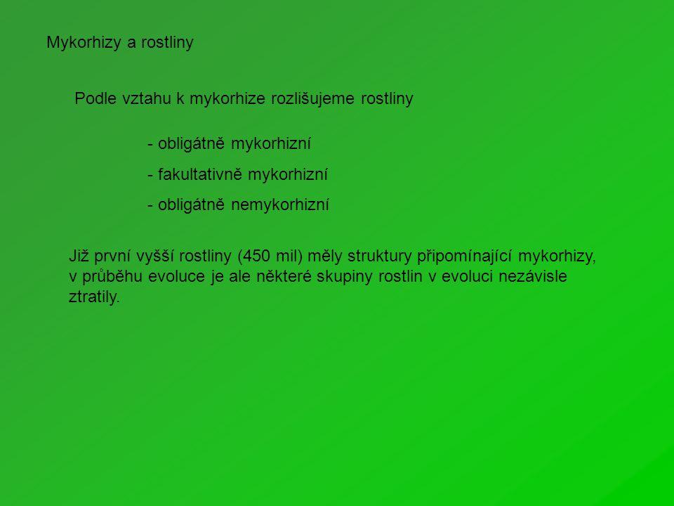 Podle vztahu k mykorhize rozlišujeme rostliny - obligátně mykorhizní - fakultativně mykorhizní - obligátně nemykorhizní Již první vyšší rostliny (450