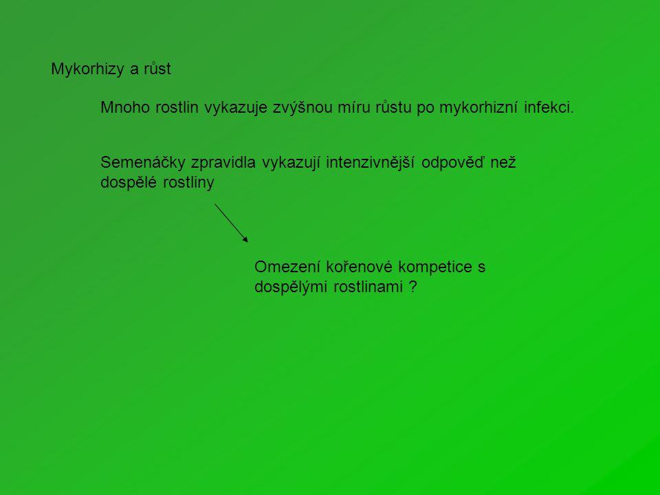 Mykorhizy a růst Mnoho rostlin vykazuje zvýšnou míru růstu po mykorhizní infekci.
