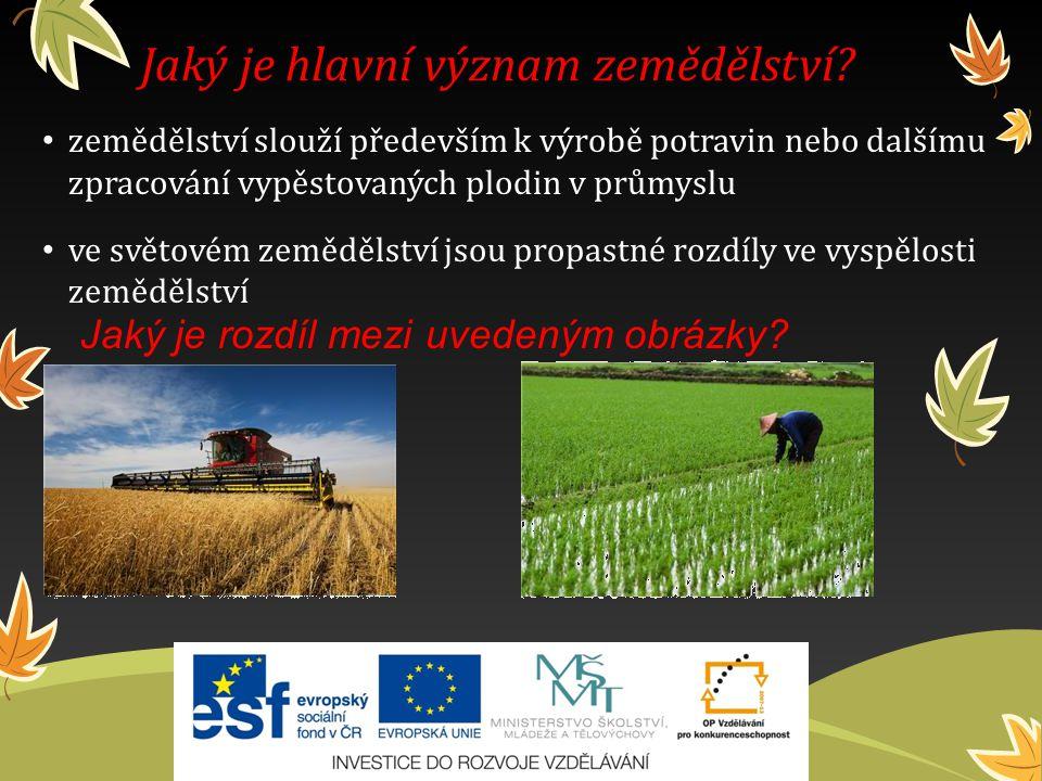 Úroveň zemědělské výroby ovlivňujípřírodní podmínky zeměpisná poloha úrodnost půdy hospodářská vyspělost státu způsob hospodaření technická úroveň vzdělanost pracovníků