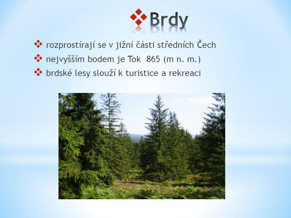  rozprostírají se v jižní části středních Čech  nejvyšším bodem je Tok 865 (m n. m.)  brdské lesy slouží k turistice a rekreaci