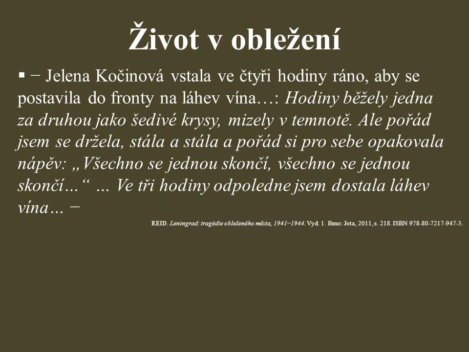 Život v obležení  − Jelena Kočinová vstala ve čtyři hodiny ráno, aby se postavila do fronty na láhev vína…: Hodiny běžely jedna za druhou jako šedivé krysy, mizely v temnotě.