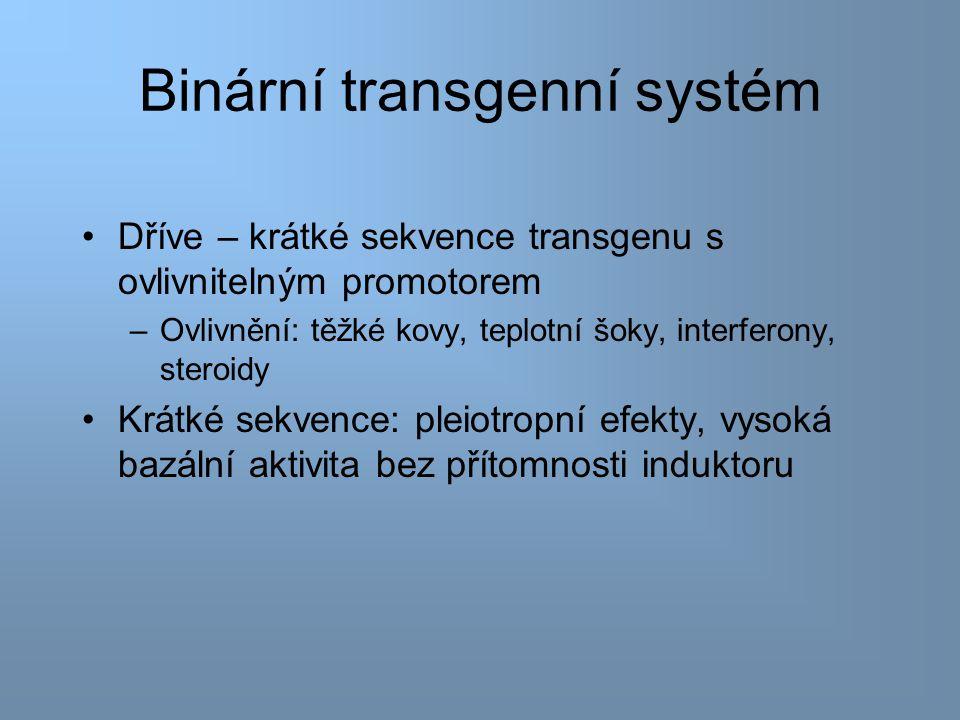 Binární transgenní systém Binární systém – efektor + transgen