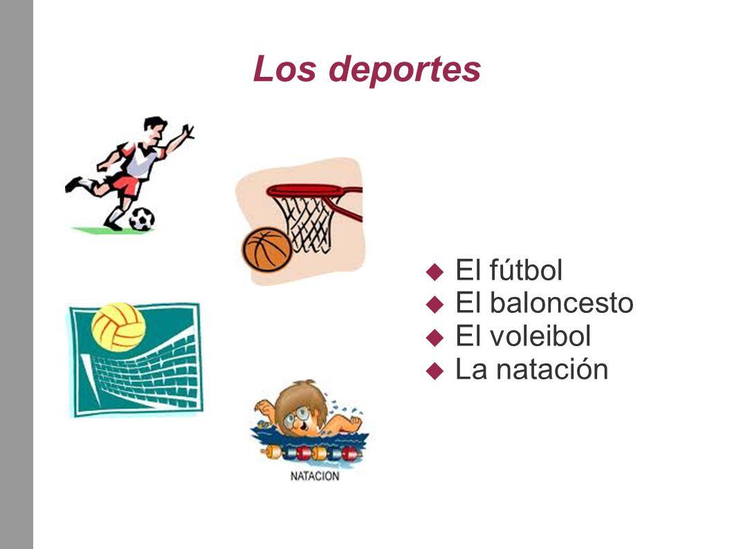 Los deportes  El fútbol  El baloncesto  El voleibol  La natación