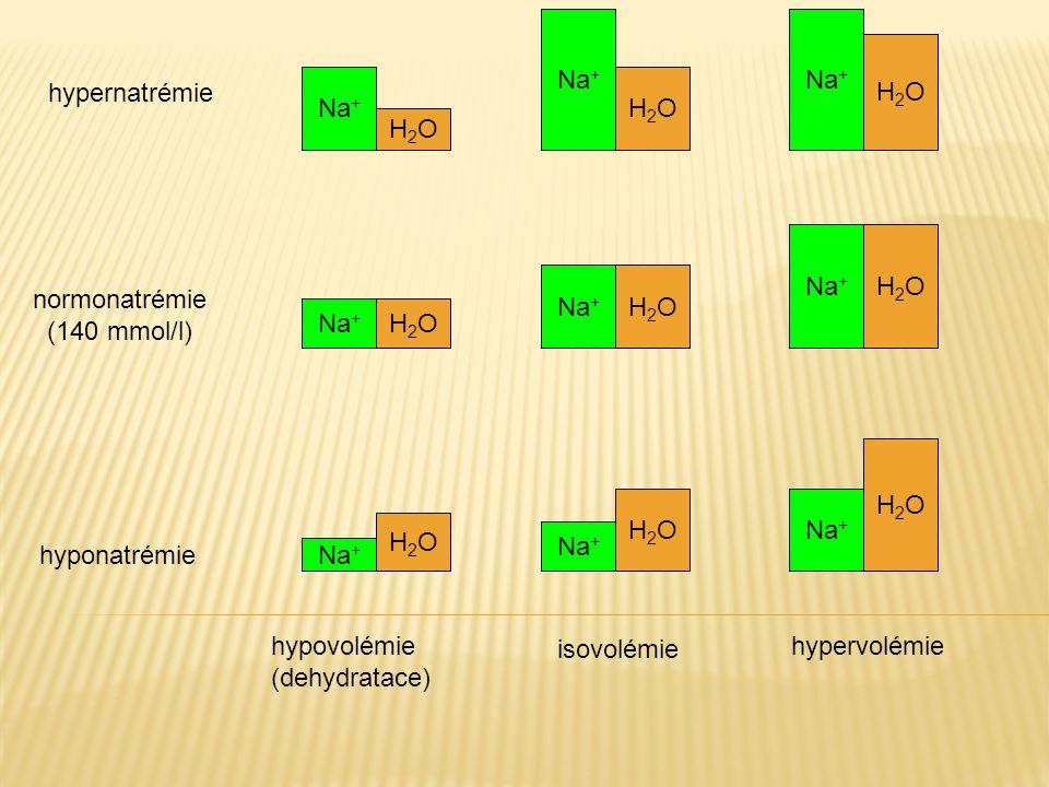 Na + H2OH2O H2OH2O H2OH2O H2OH2O H2OH2O H2OH2O H2OH2O H2OH2O H2OH2O isovolémie hypervolémiehypovolémie (dehydratace) hypernatrémie hyponatrémie normon