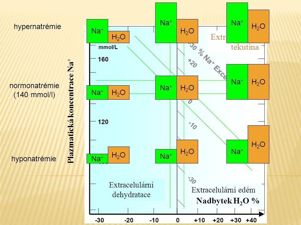 Extracelulární tekutina Na + H2OH2O H2OH2O H2OH2O H2OH2O H2OH2O H2OH2O H2OH2O H2OH2O H2OH2O Plazmatická koncentrace Na + Extracelulární dehydratace Ex