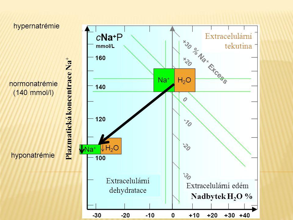 Extracelulární tekutina Na + H2OH2O H 2 O Plazmatická koncentrace Na + Extracelulární dehydratace Extracelulární edém Nadbytek H 2 O % hypernatrémie h