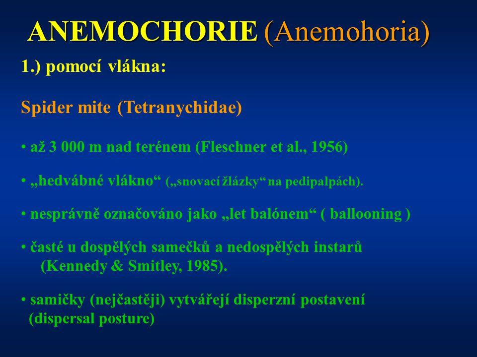 """ANEMOCHORIE (Anemohoria) 1.) pomocí vlákna: Spider mite (Tetranychidae) až 3 000 m nad terénem (Fleschner et al., 1956) """"hedvábné vlákno (""""snovací žlázky na pedipalpách)."""