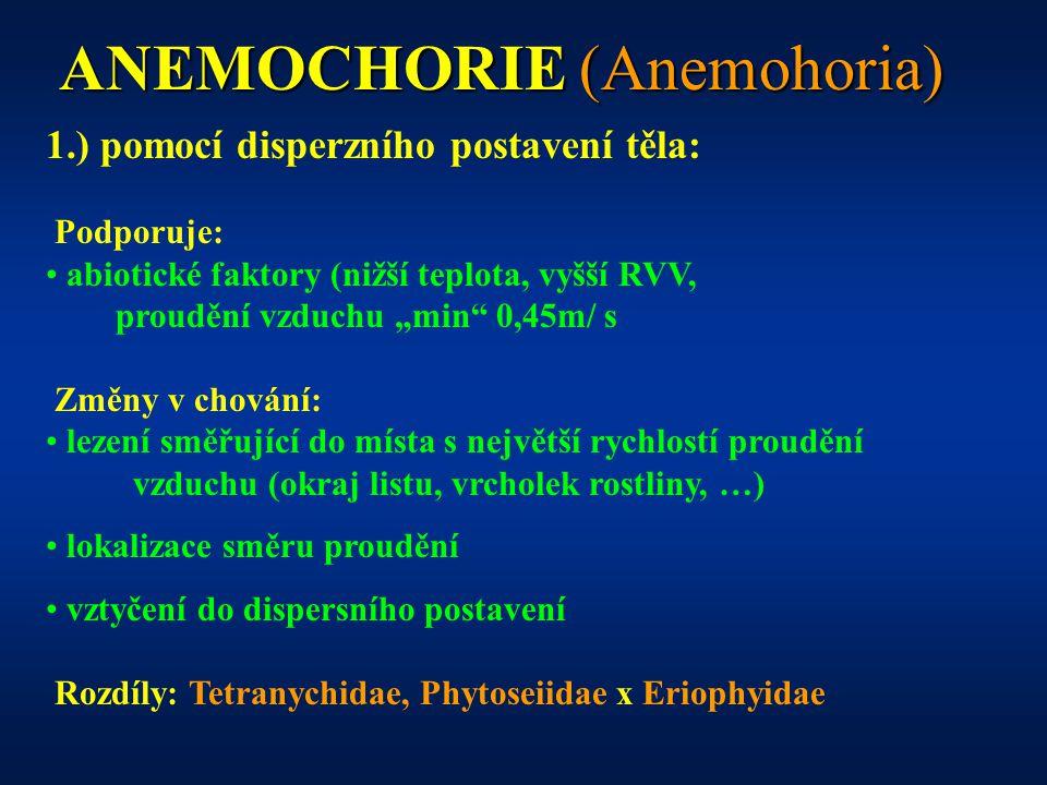 """ANEMOCHORIE (Anemohoria) 1.) pomocí disperzního postavení těla: Podporuje: abiotické faktory (nižší teplota, vyšší RVV, proudění vzduchu """"min 0,45m/ s Změny v chování: lezení směřující do místa s největší rychlostí proudění vzduchu (okraj listu, vrcholek rostliny, …) lokalizace směru proudění vztyčení do dispersního postavení Rozdíly: Tetranychidae, Phytoseiidae x Eriophyidae"""