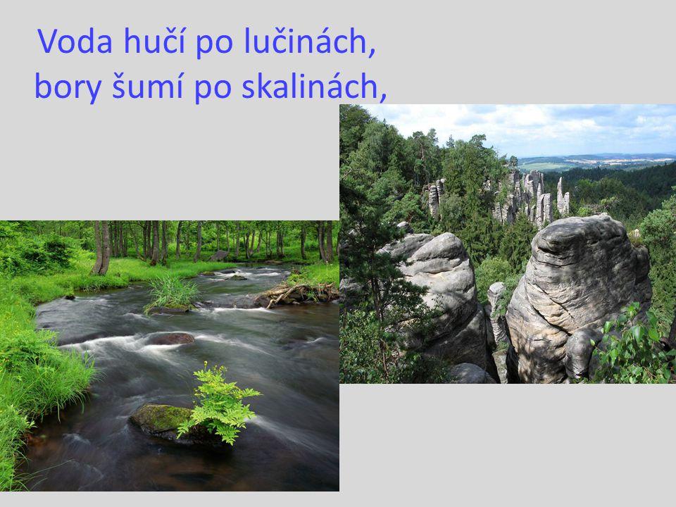 Voda hučí po lučinách, bory šumí po skalinách,