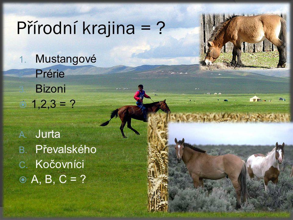 Přírodní krajina = .1. Mustangové 2. Prérie 3. Bizoni  1,2,3 = .