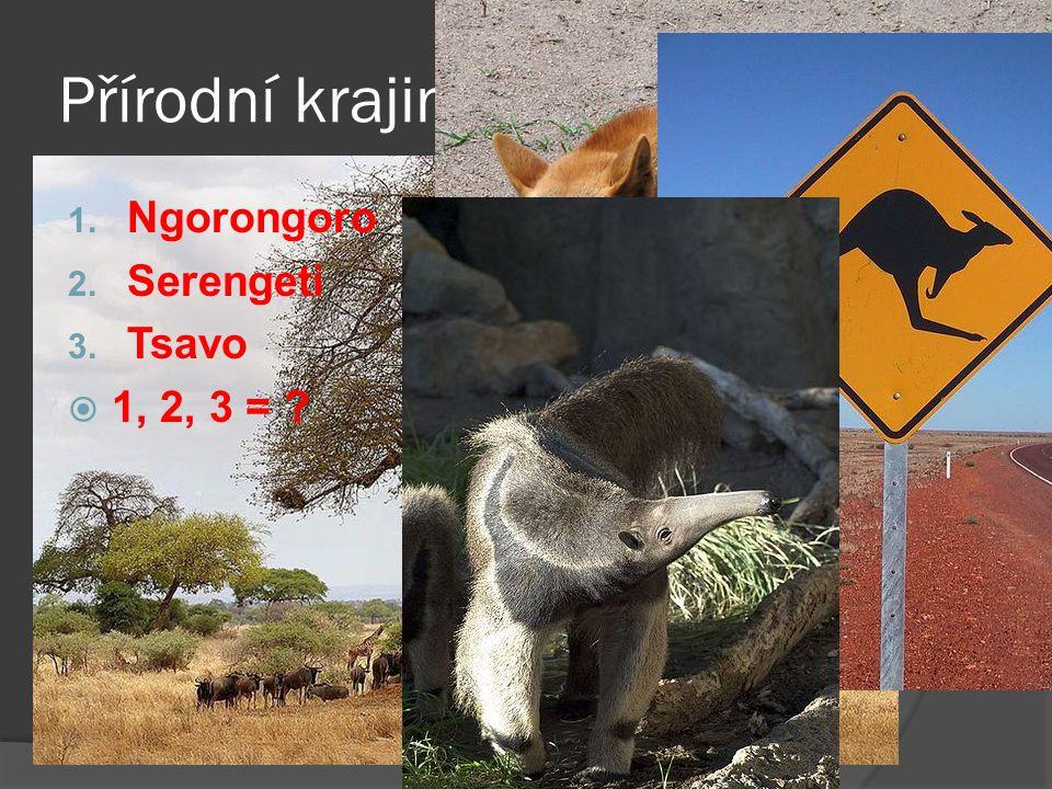 Přírodní krajina = 1. Ngorongoro 2. Serengeti 3. Tsavo  1, 2, 3 =