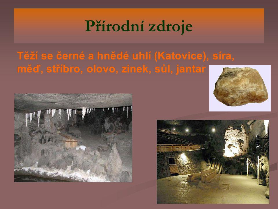Přírodní zdroje Těží se černé a hnědé uhlí (Katovice), síra, měď, stříbro, olovo, zinek, sůl, jantar