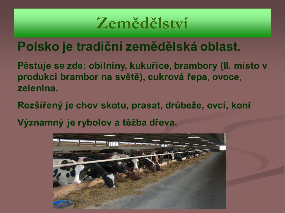 Zemědělství Polsko je tradiční zemědělská oblast. Pěstuje se zde: obilniny, kukuřice, brambory (II. místo v produkci brambor na světě), cukrová řepa,