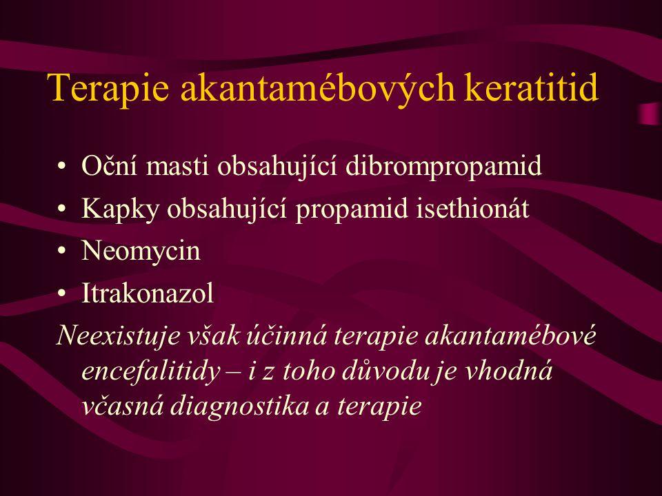 Terapie akantamébových keratitid Oční masti obsahující dibrompropamid Kapky obsahující propamid isethionát Neomycin Itrakonazol Neexistuje však účinná terapie akantamébové encefalitidy – i z toho důvodu je vhodná včasná diagnostika a terapie