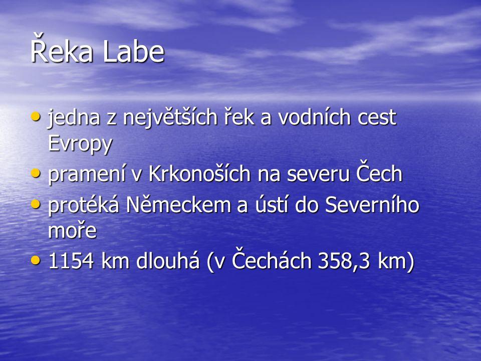 Řeka Labe jedna z největších řek a vodních cest Evropy jedna z největších řek a vodních cest Evropy pramení v Krkonoších na severu Čech pramení v Krkonoších na severu Čech protéká Německem a ústí do Severního moře protéká Německem a ústí do Severního moře 1154 km dlouhá (v Čechách 358,3 km) 1154 km dlouhá (v Čechách 358,3 km)