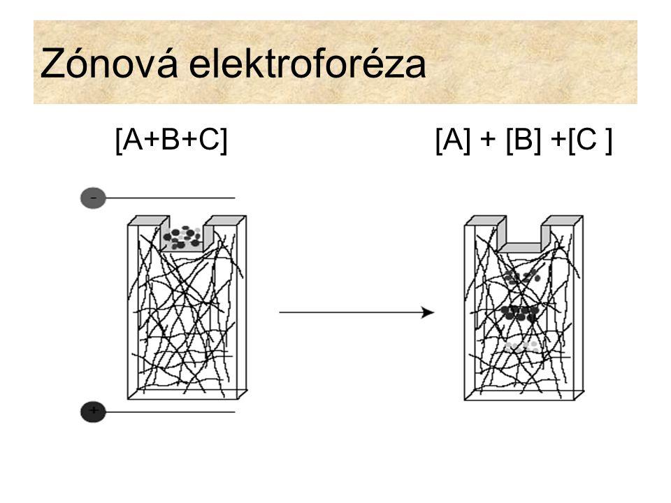 Elektroforéza v agarózovém gelu Agaróza je získávána z mořských řas.