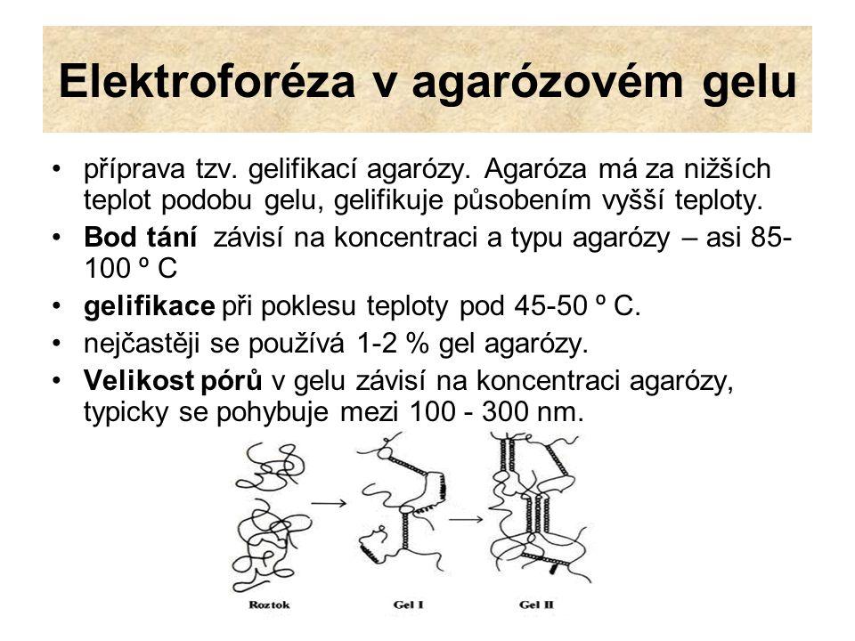 Elektroforéza v agarózovém gelu příprava tzv. gelifikací agarózy. Agaróza má za nižších teplot podobu gelu, gelifikuje působením vyšší teploty. Bod tá