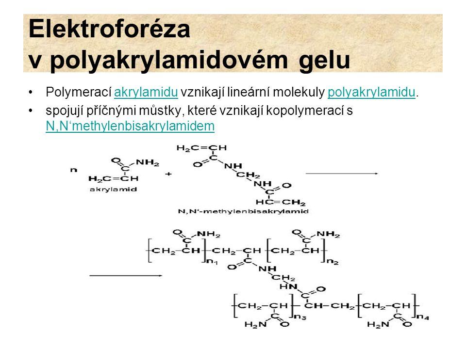 Elektroforéza v polyakrylamidovém gelu Akrylamid i methylenbisakrylamid jsou poměrně stabilní látky polymerace probíhá v nepřítomnosti vzdušného kyslíku zahajuje se přimíšením katalyzátorů peroxydisíranu amonného (APS) a N,N,N',N'- tetramethylendiaminu (TEMED).