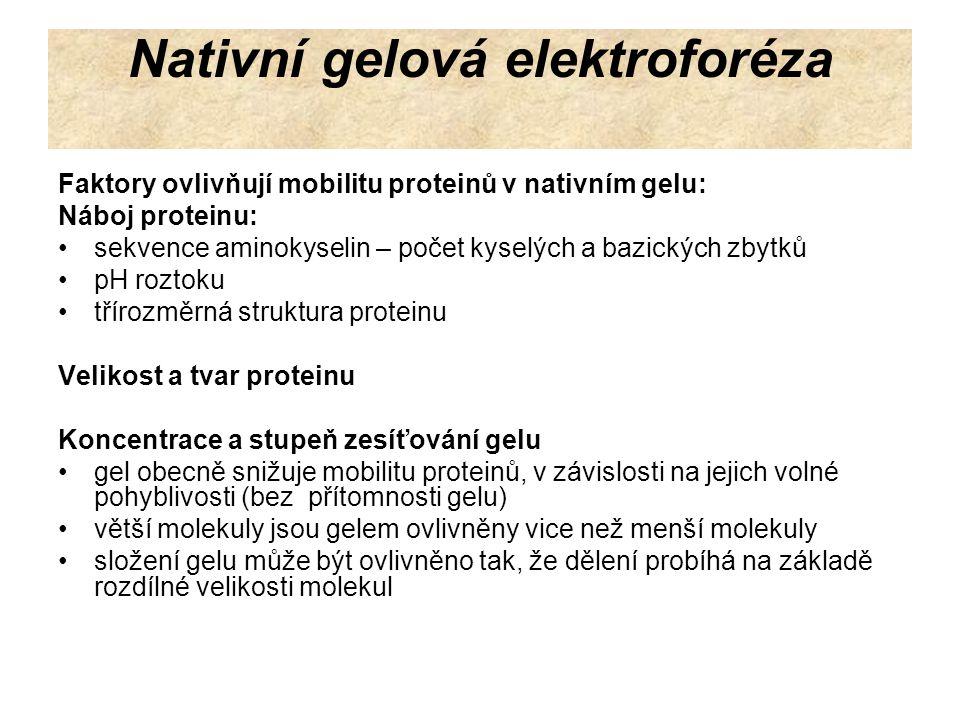 Nativní gelová elektroforéza Podmínky při elektroforéze musí být optimalizovány pro určitý protein.
